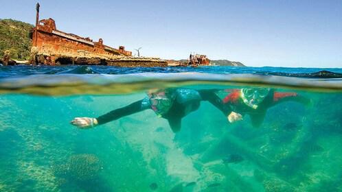 Snorkelers swim around shipwrecks in Moreton Island