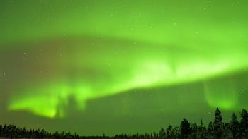 Tur med övernattning i Lappland med huskysläde