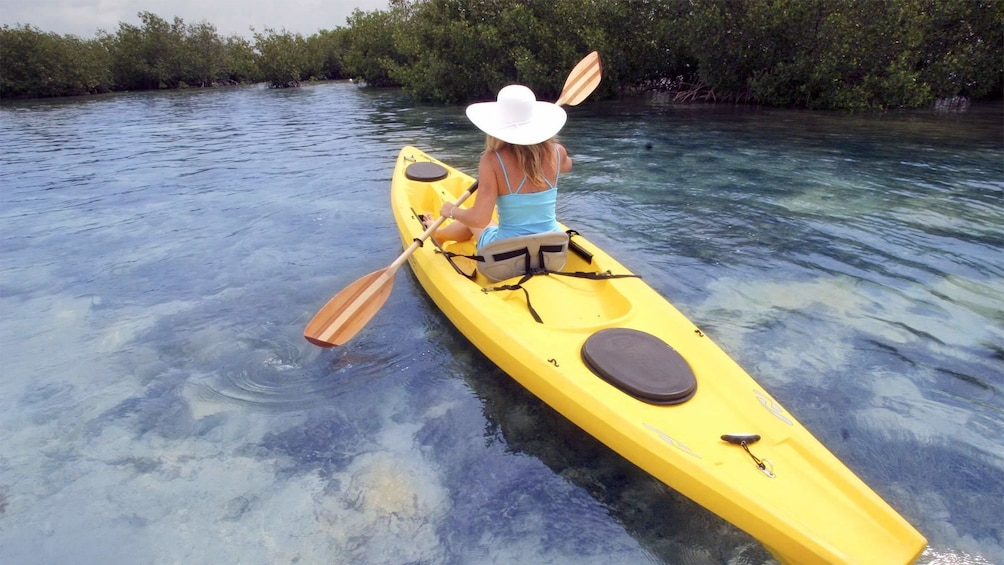 Show item 4 of 5. View of the Backcountry Kayak Tour in the Florida Keys - Key West, FL
