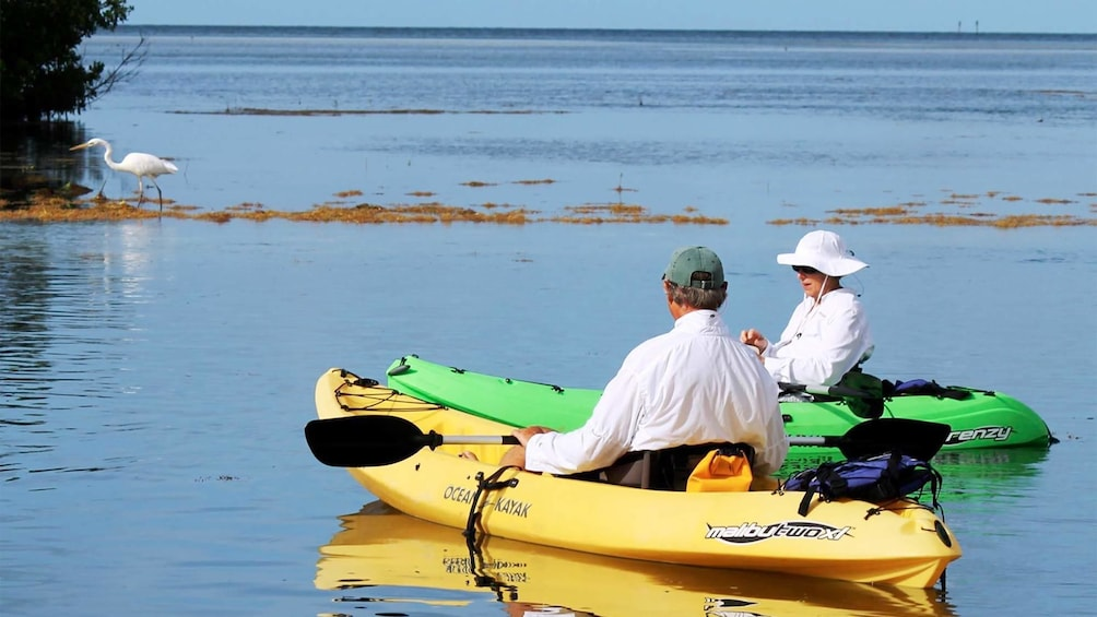 Show item 5 of 5. Couple enjoying a relaxing view on the Backcountry Kayak Tour in the Florida Keys - Key West, FL