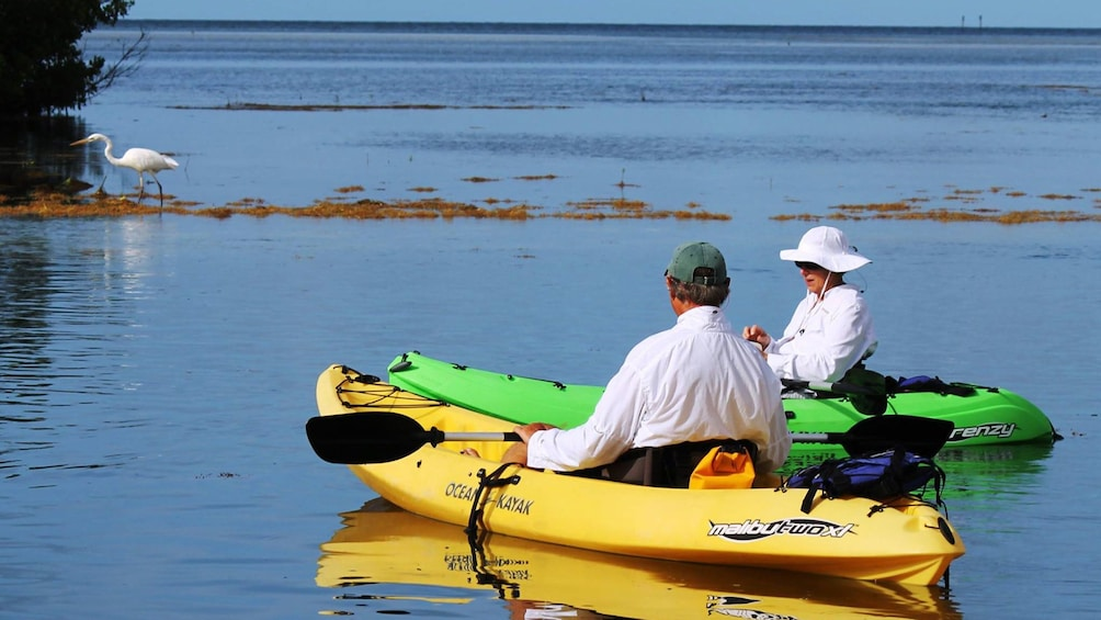 Show item 4 of 5. Two kayakers resting on the water in Florida Keys