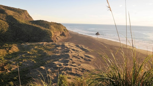 Sunset views on the Wild West Coast and Waitakere Ranges Discovery Tour