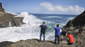 Wild West Coast & Waitakere Ranges Full-Day Photo Discovery Tour