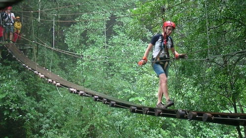 Group on rope bridge through the trees in Costa Rica