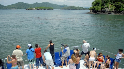 Guests enjoying scenic views on the Tortuga Island Cruise