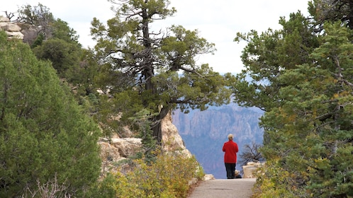 Woman on a path at Bright Angel Trail at the Grand Canyon