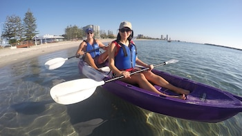 Half-Day Dolphin Kayaking & Stradbroke Island Tour