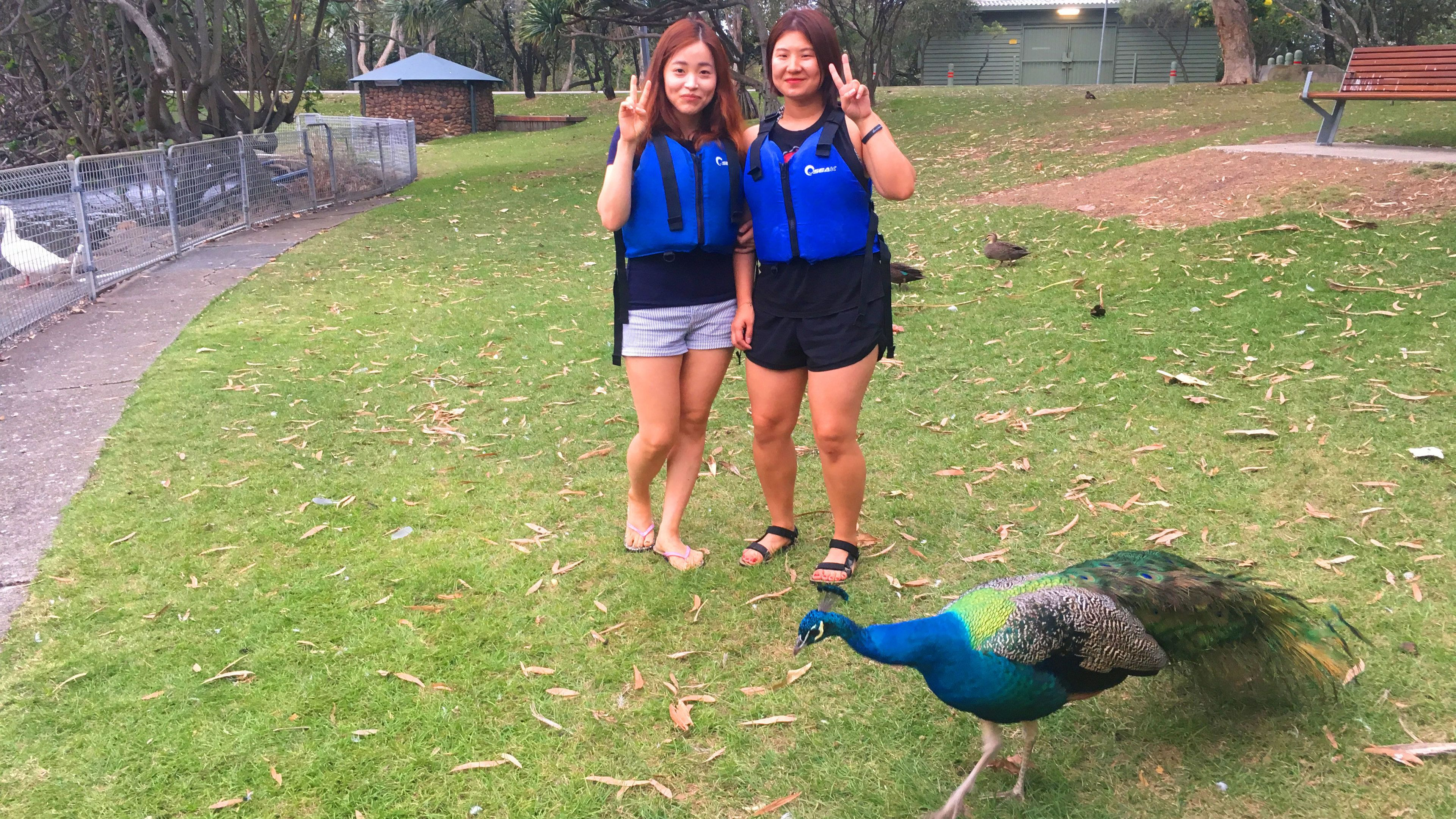 Two women pose next to a peacock