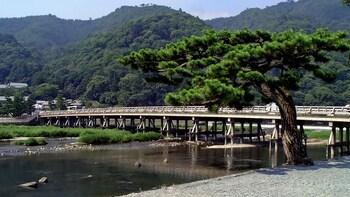 Private Half-Day Tour of Arashiyama