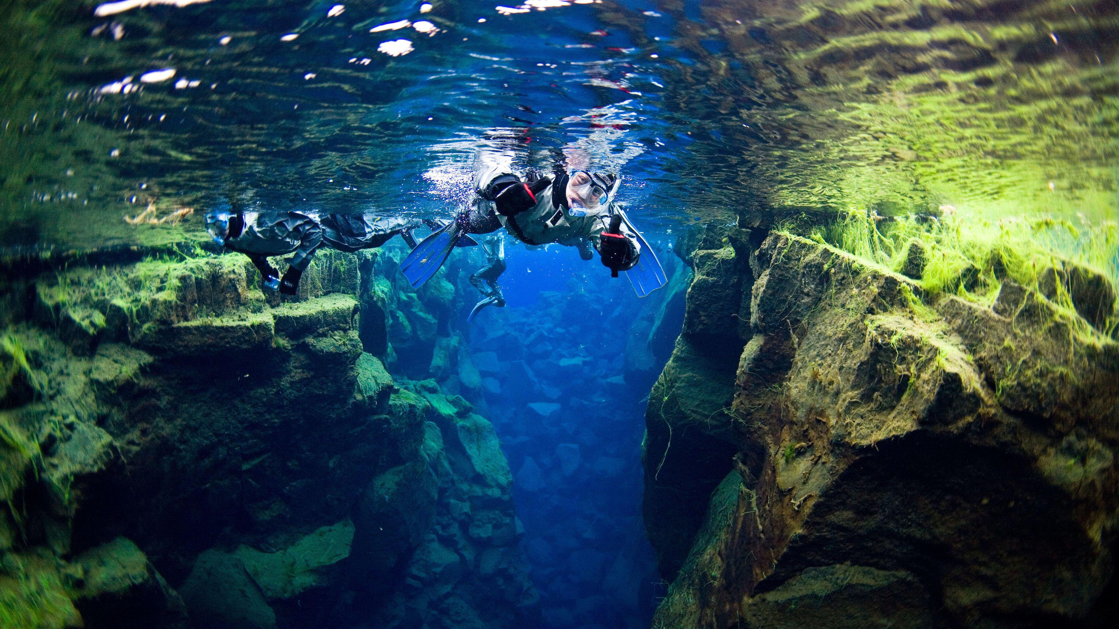 Snorkeling group in Reykjavik