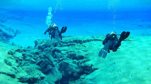 Scuba divers along the ocean floor in Reykjavik
