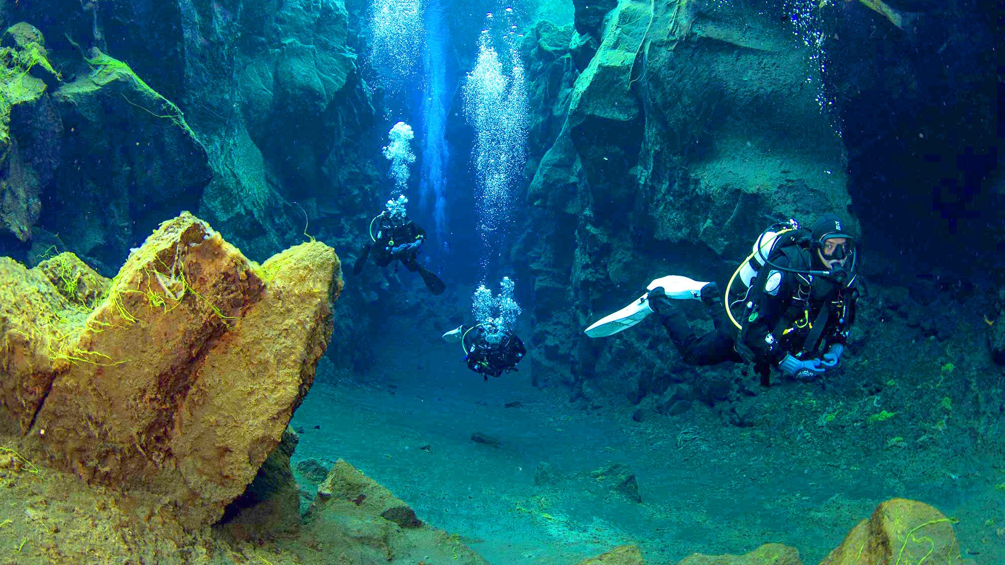 Scuba diving group in Arctic waters