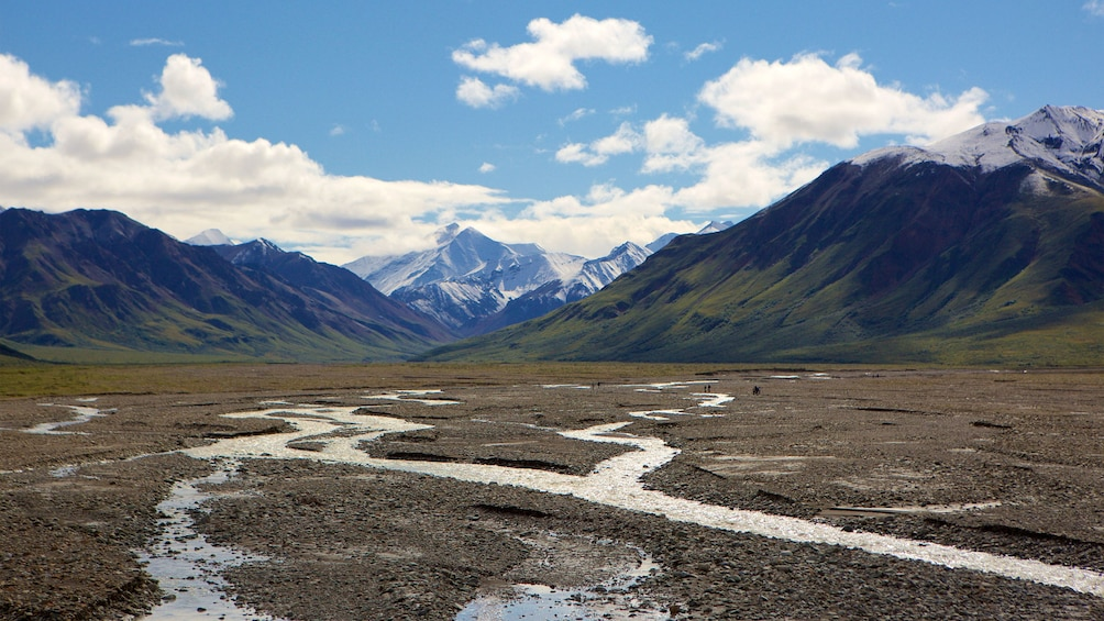 Show item 3 of 4. Denali National Park in Alaska