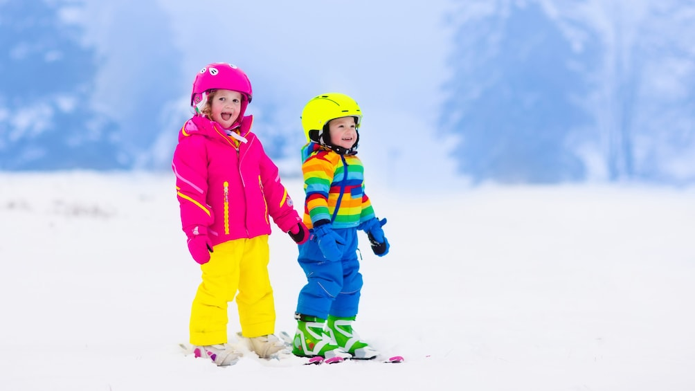 Show item 3 of 5. Two children skiing