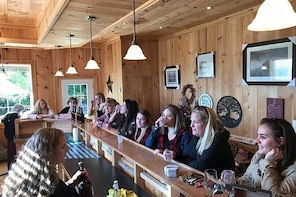 Private:Brewery, Winery, and Cider & Spirit Tastings Tour in SW Ontario
