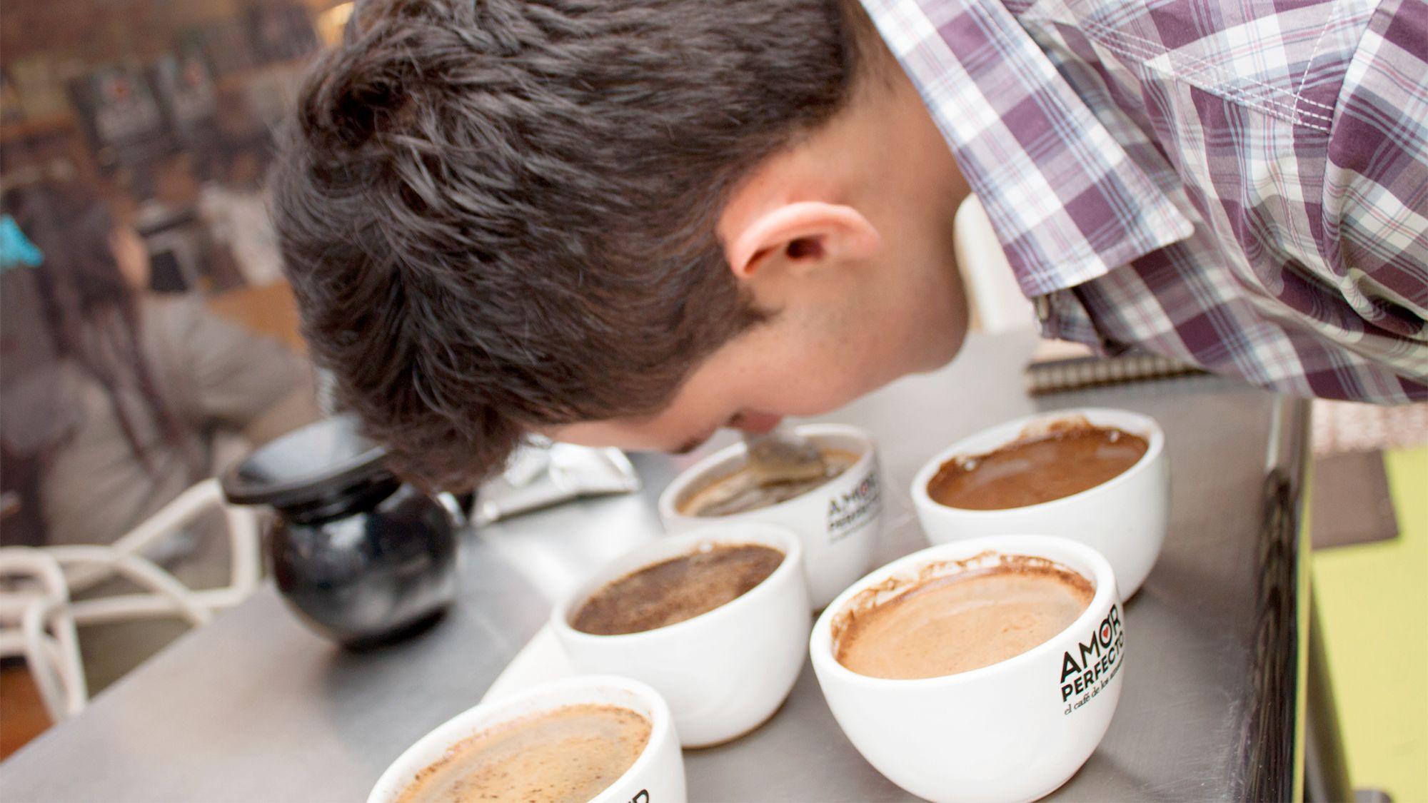 Half-Day Bogota Coffee Masters Tour