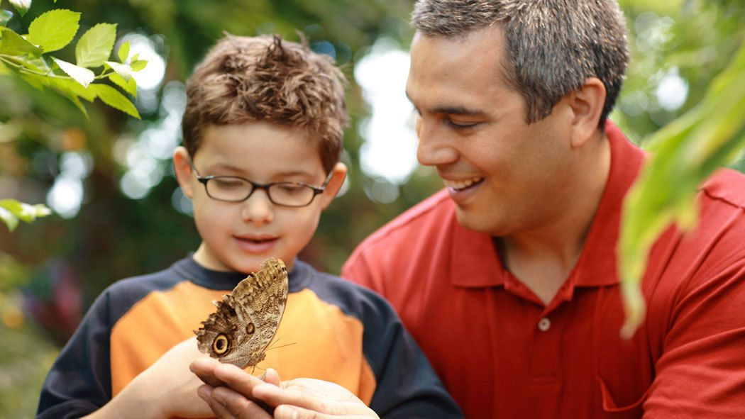 Father and son at Strong Museum of Play butterfly garden in Rochester