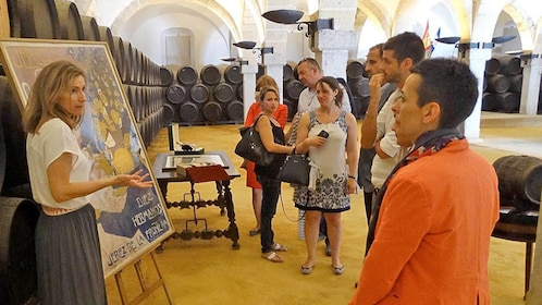 Group on a winery tour in Cadiz