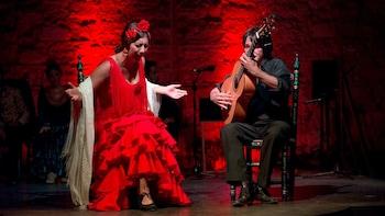 Esperienza di Flamenco privata da Cadiz