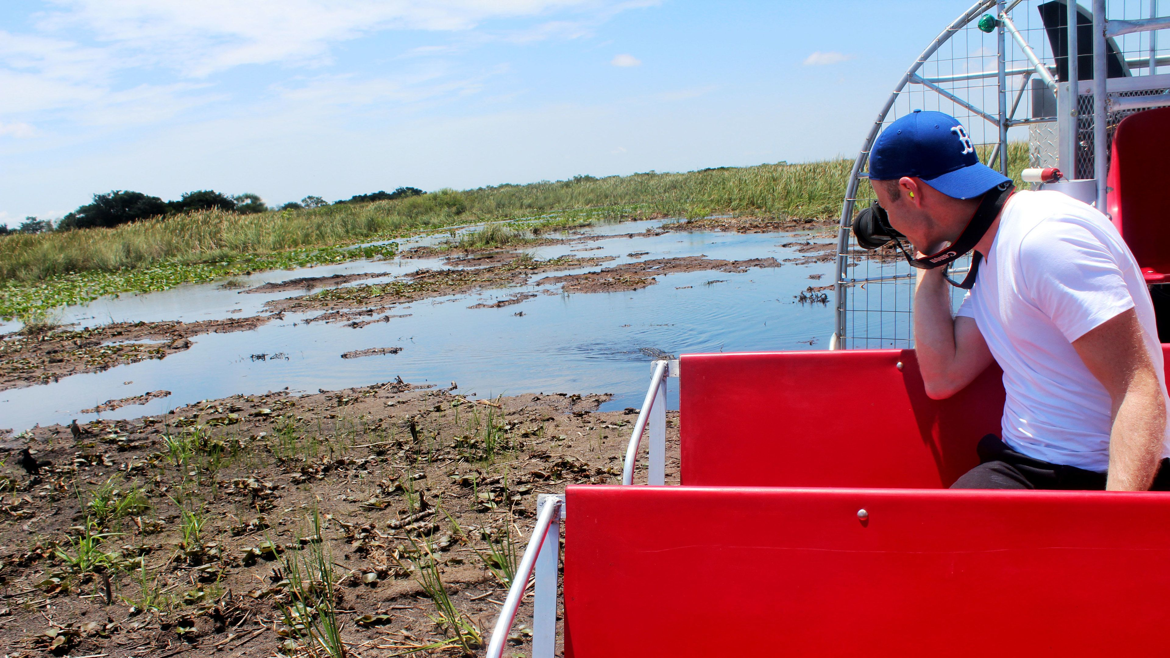 Man photographing alligator from airboat in Everglades