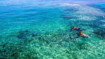Full Day Florida Keys Marine Eco Adventure