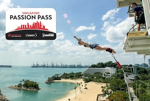 De Ultimate Singapore-pas - Flexi Plus Premium