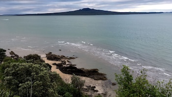 Devonport Volcano & Coastal Lava Exploration Tour