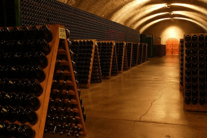 Half Day Wine Country Experience (Tasting fees included)