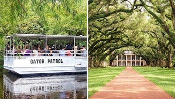 Manchac Swamp & Laura or Oak Alley Plantation Combo Tour