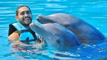 Experiencia Dolphin Royal Swim en Isla Mujeres para grupo pequeño