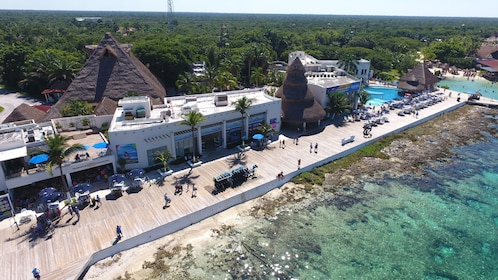 Small-Group Cozumel Dolphin Swim Adventure with Lunch