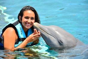 Encuentro con delfines en Cozumel en el parque Chankanaab con almuerzo