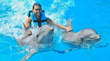 Dolphin Royal Swim en el Parque Acuático Aquaventuras - Vallarta