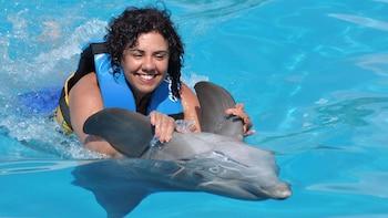 Dolphin Swim para grupos pequeños en el parque acuático Aquaventuras Park