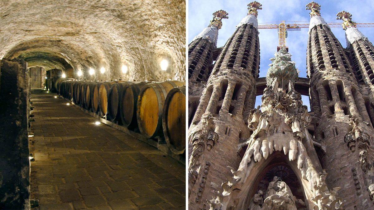 Tur til Monserrat og Codorniu vinkældre med prøvesmagning og Sagrada Famili...