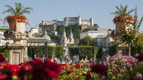 View of the city from a garden in Salzburg