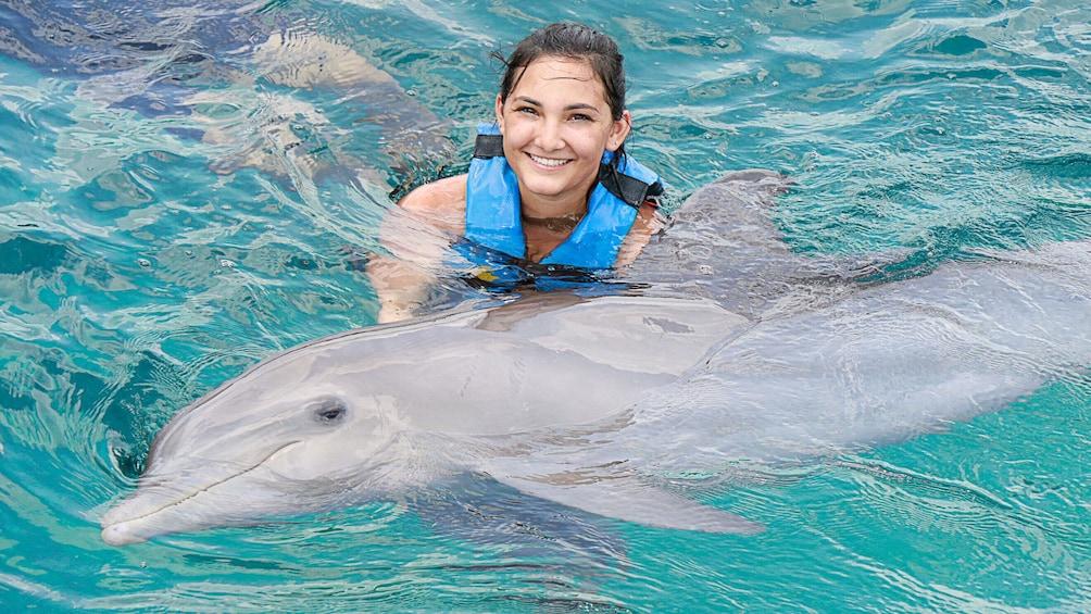 Show item 5 of 10. Dolphin Swim Adventure in Punta Cana