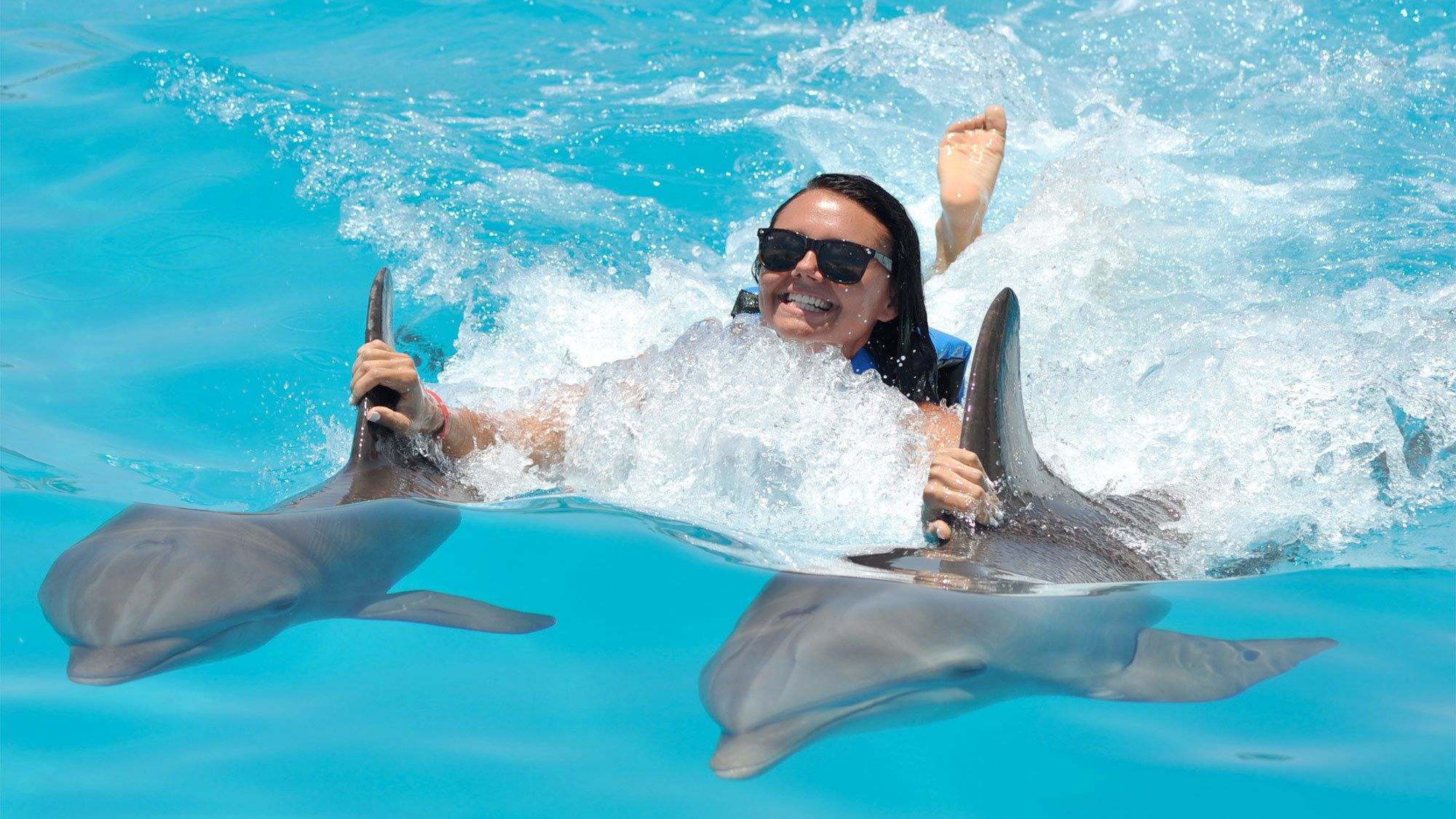 Woman swimming with two dolphins in Punta Cana