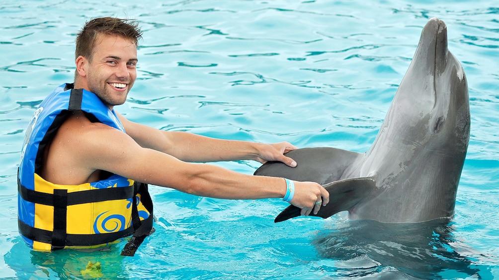 Carregar foto 3 de 10. Dolphin Discovery tour in Punta Cana