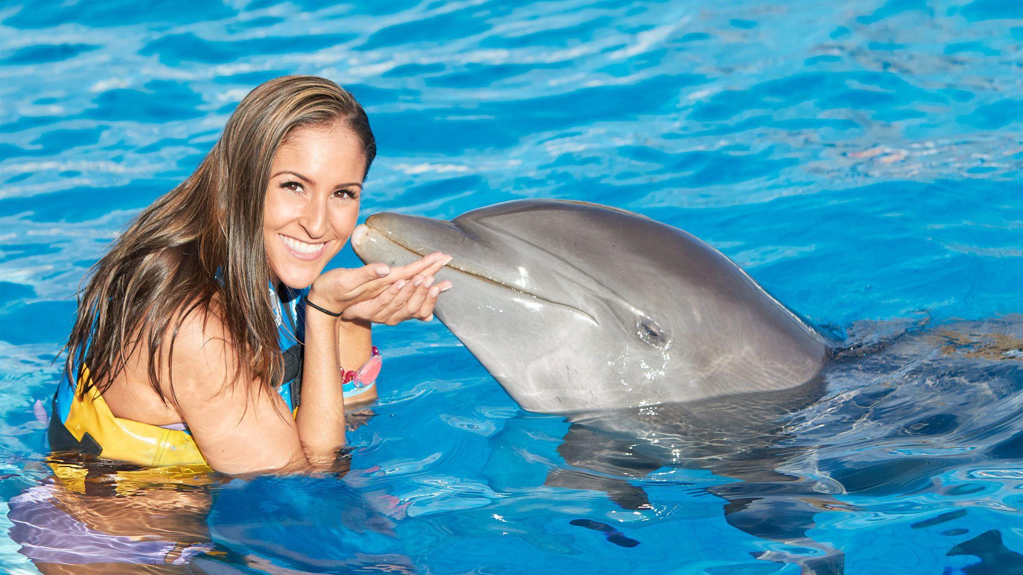 Dolphin Encounter in Punta Cana