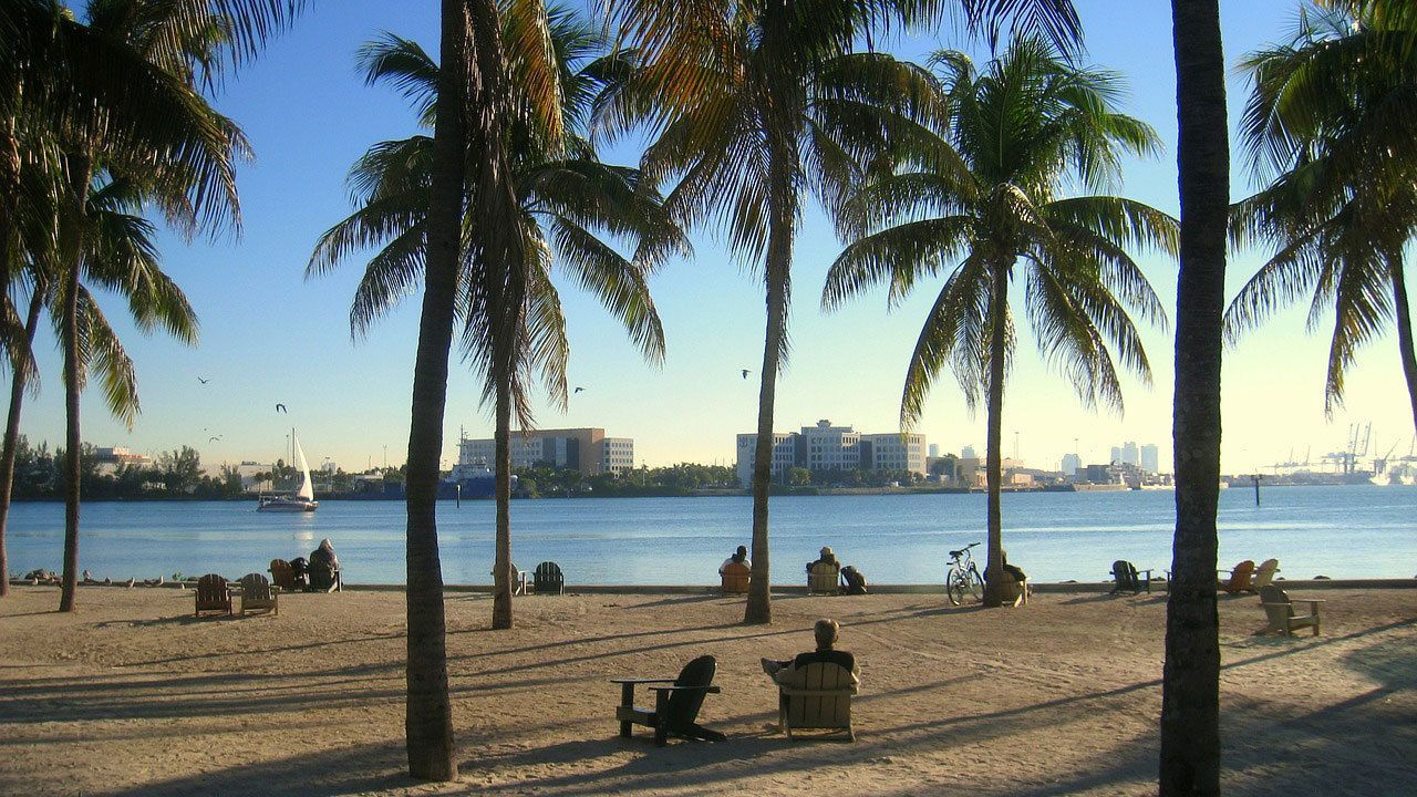 Miami Day Trip by Air with Hop-On Hop-Off Bus Tour & Lunch