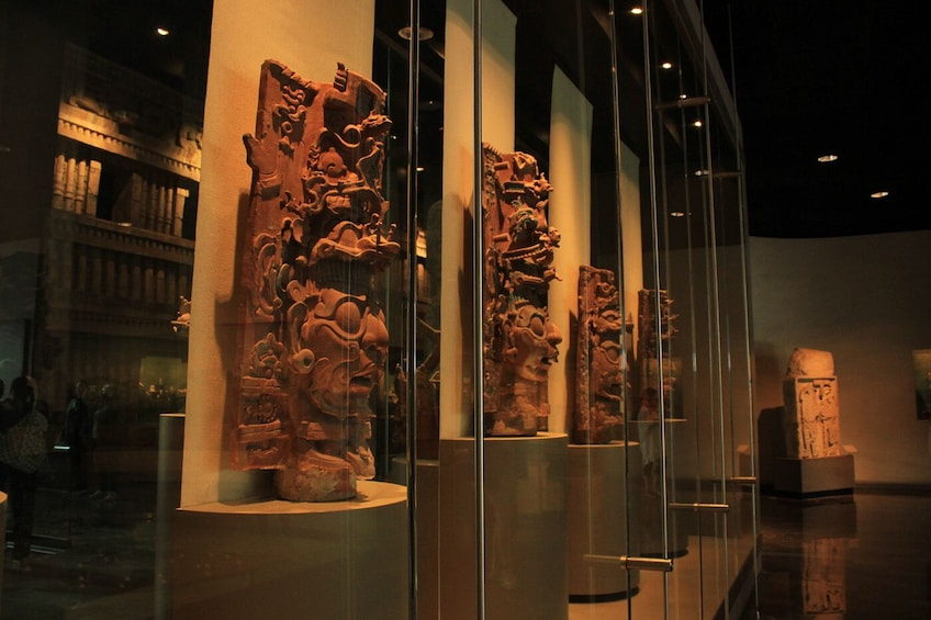 Charger l'élément 3 sur 9. Guided Visit to Anthropology Museum