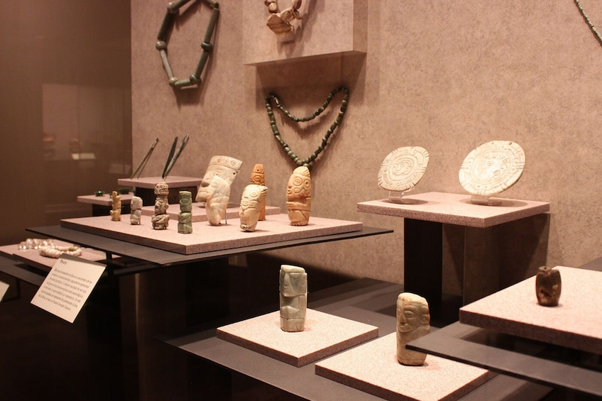 Charger l'élément 9 sur 9. Guided Visit to Anthropology Museum