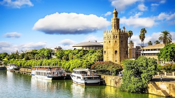 Seville Historical Walking Tour with Optional Flamenco Show
