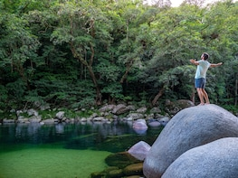 Full Day Tour Discovering the Daintree Rainforest