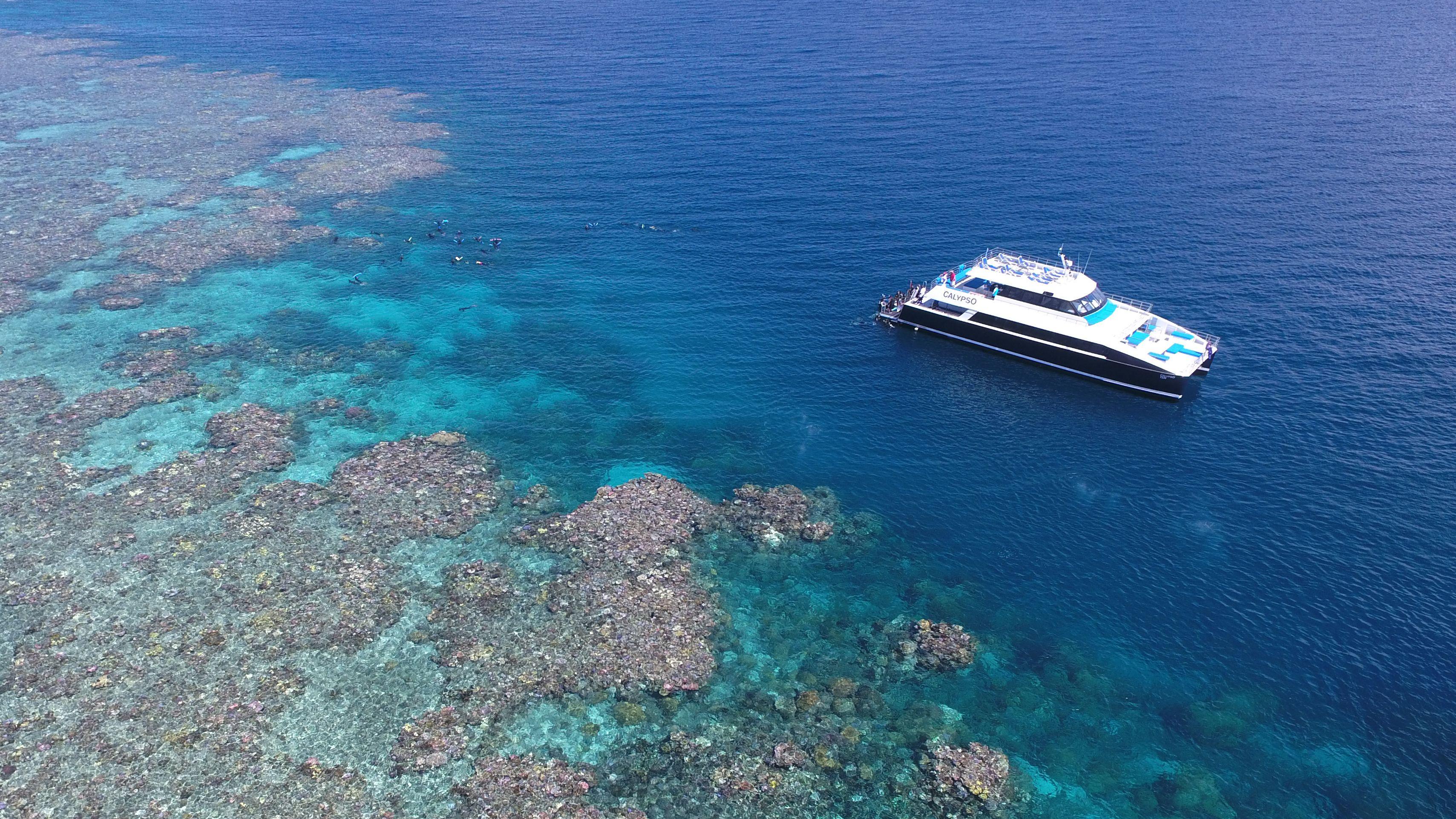 Great Barrier Reef Snorkel & Dive Cruise - 3 Reef Sites