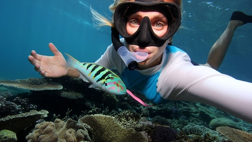 Young lady with colorful fish snorkeling in the Great Barrier Reef in Australia.