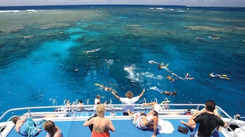 Full Day Great Barrier Reef Snorkelling Cruise with Lunch