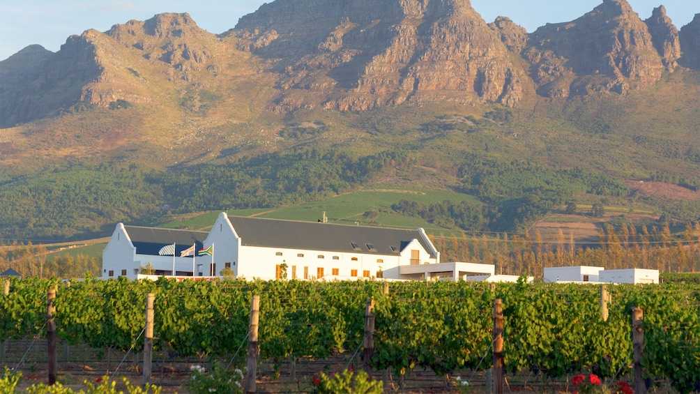 Show item 1 of 5. stellenbosch mountains in Cape Town, South Africa