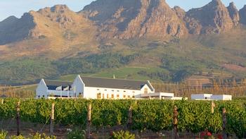 Tour di mezza giornata di Cape Winelands